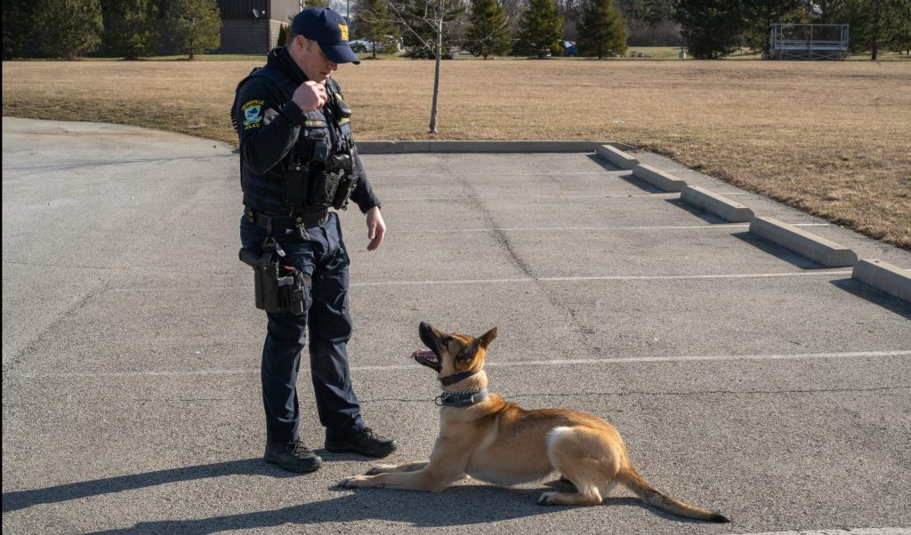 ZPD K-9 Mika Reporting for Duty